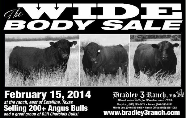 The 2014 Wide Body Sale