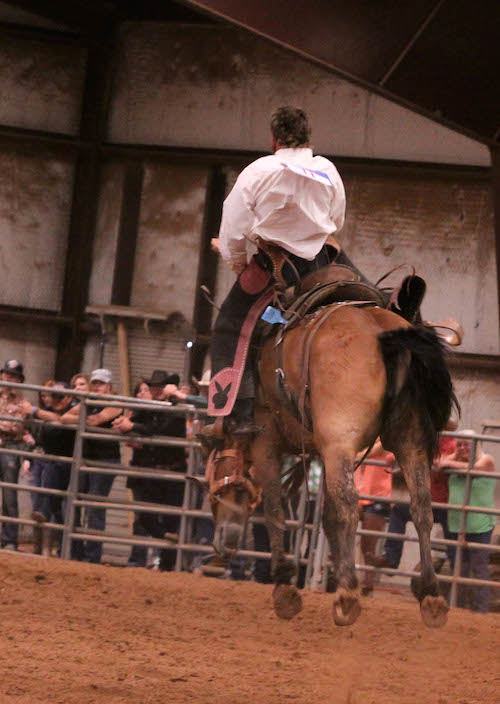 Kutter Weatherby of Texas' Ringo Ranch ended up placing second and taking $4,500 home at the 2014 Championship Ranch Bronc Riding.