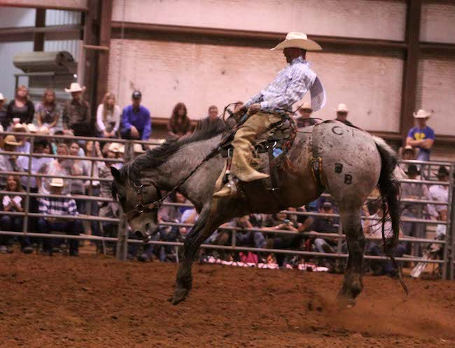 Garret Maness of Myers Cattle in New Mexico earned the championship title with a combined score of 156 on two broncs. He took home $6,000.