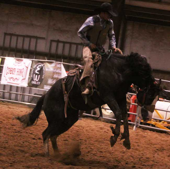 Gage Moorhouse of Texas' Tongue River Ranch took third place and a paycheck of $3,000. Fourth went to Brooks Bland of Silver Spur, Colo.