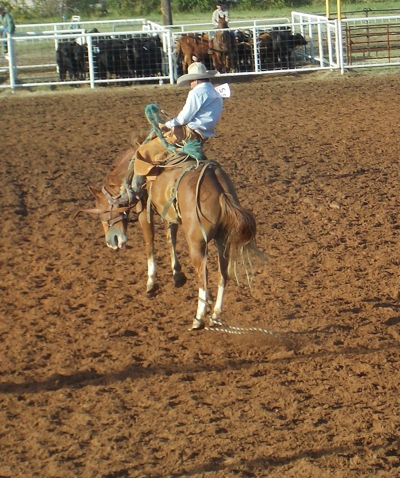 Top Hand Bronc Riding - 2014 Pryor Creek - WRCA