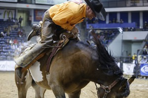 Is that a grin or a grimace on Jeremiah Campbell's face? He rode for Davison and Sons Cattle Co.,