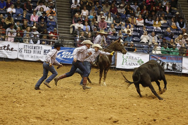 Barron Highsmith Cattle and Short Ranches had the fastest time in the Thursday-night Wild Cow Milking, with a smoking :33.18.