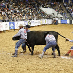 The Lonesome Pine Ranch team from Cedar Point, Kansas, puts a stop on their cow, ending up with a time of :39.58 Thursday night.
