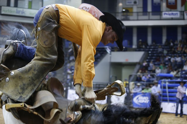 Who needs an amusement park ride? Jeremiah Campbell's unscheduled dismount was a high-  flying one.