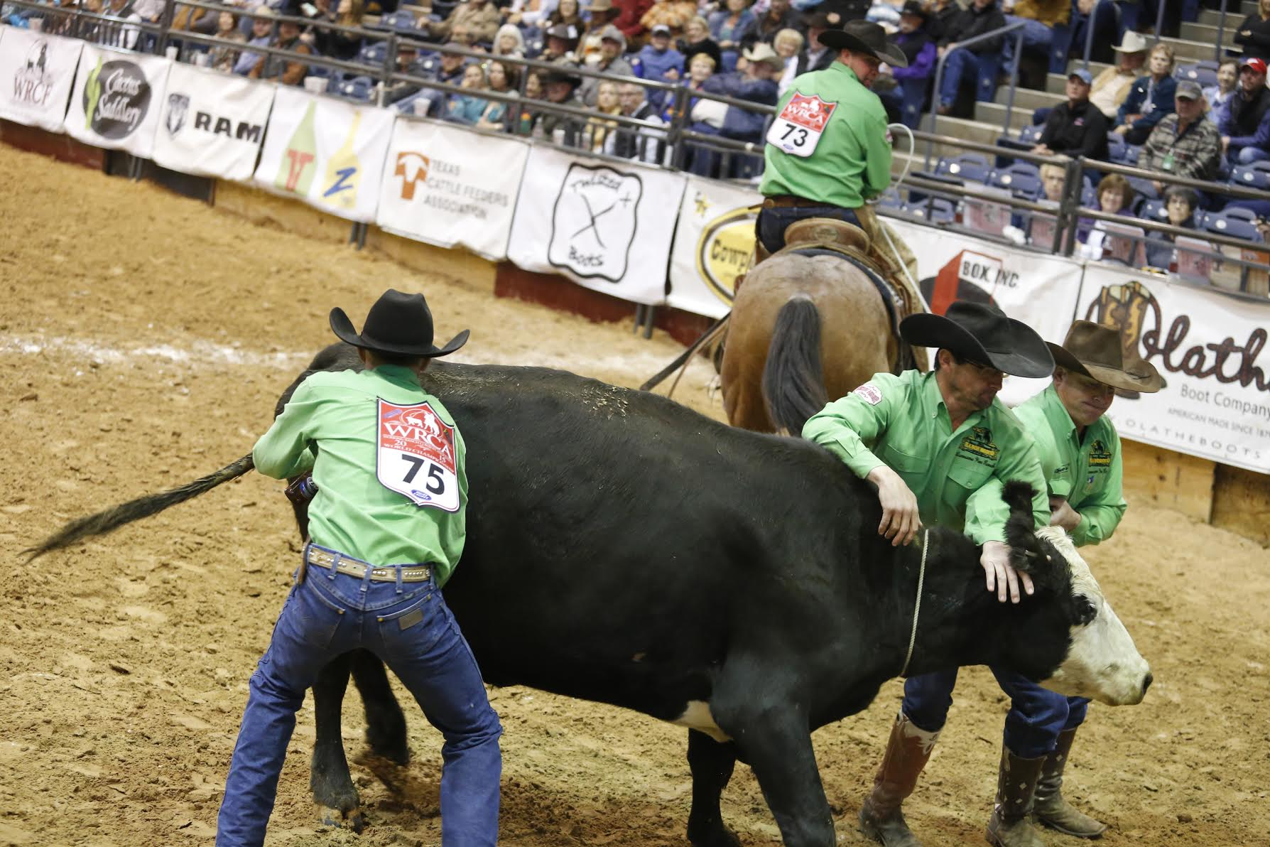 Lonesome Pine Wild Cow Milking 20 WCRR