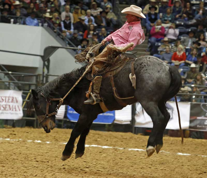 Bruce Beeman of the Broken H Ranch & H Cross Cattle team rode his 23rd straight WCRR bronc, making him a legend in the event.