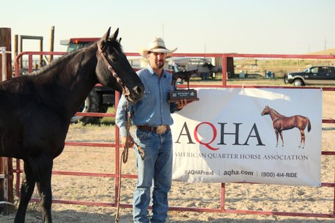 Top Horse CadesCat Ridden By: Jeremy Knoles, Hip O Ranch / Barta Cattle Co. Owned By: Lisa Marie Nelson – Arnold, NE